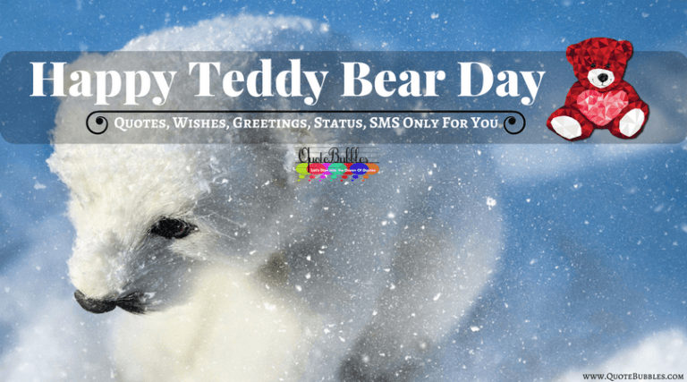 Happy Teddy Day Quotes, Wishes, Greetings [2021] – QuoteBubbles